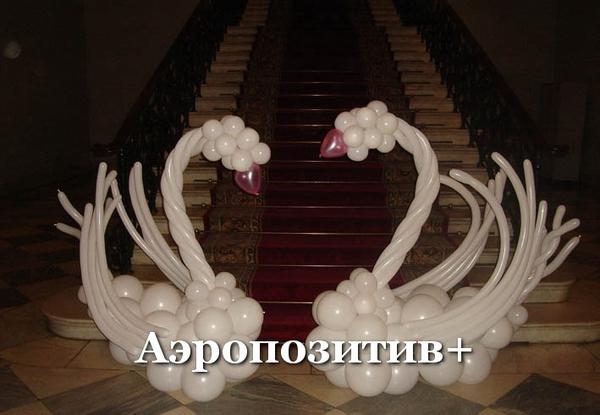 Лебеди на свадьбу из шаров своими руками мастер класс - Selivanov shina